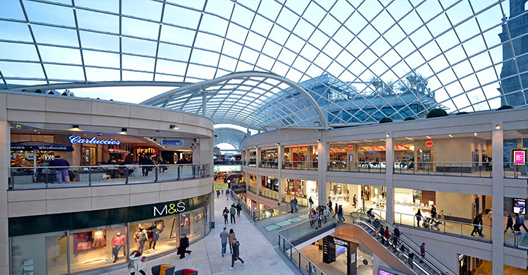Shopping Malls & Store Groups